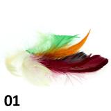 Peříčka na nehty č.01 - 5 ks