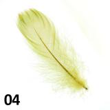 Peříčka na nehty č.04 - 5 ks