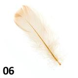Peříčka na nehty č.06 - 5 ks
