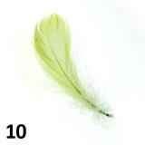 Peříčka na nehty č.10 - 5 ks