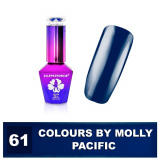 61 Gel lak Colours by Molly 10ml - Pacific (A)