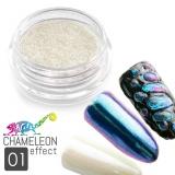 Pyl na nehty - CHAMELEON efekt 01 (A)